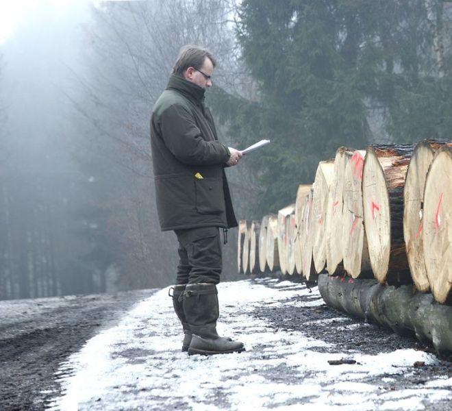 1_heimische Holzlagerplätze besichtigen